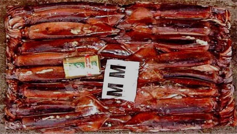 中澳公司肉类和海鲜_Page_39
